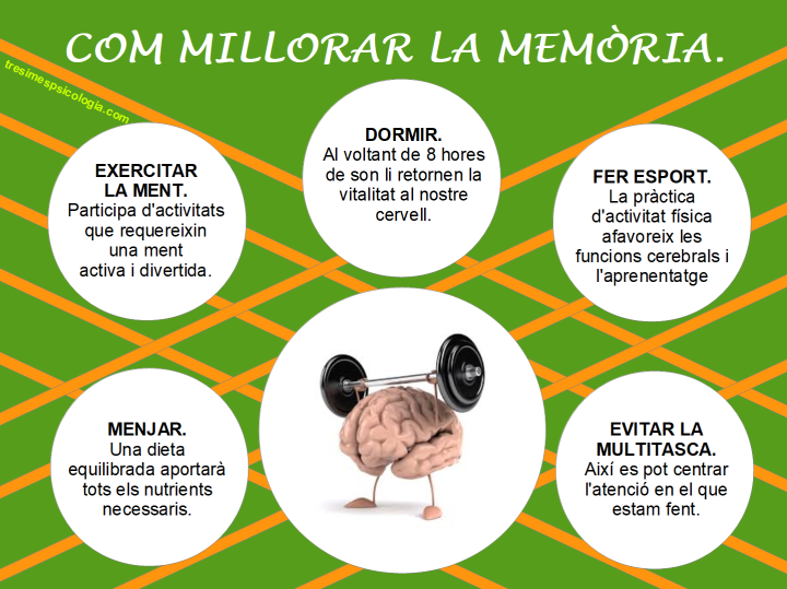 Infografia Memòria.png